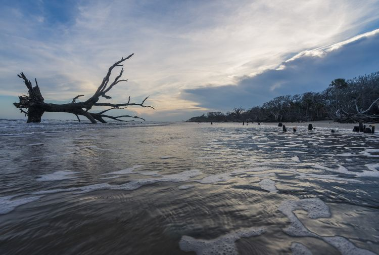 Bathing Boneyard dynamic Beach  - jeffmoreau   ello