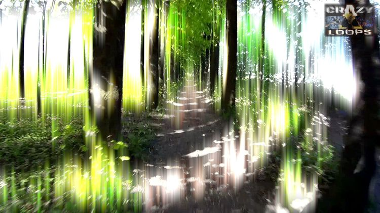 :) Glowing Path Forest - forest - crazy_loops | ello