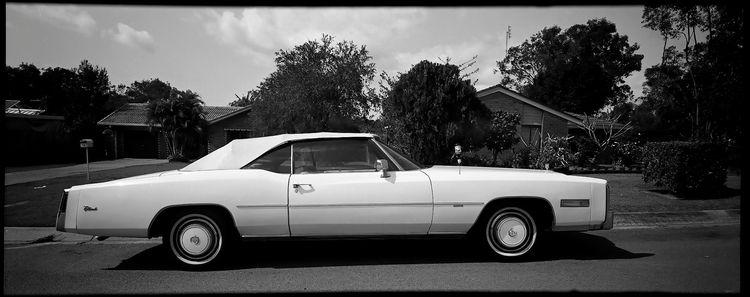Cadillac Eldorado - Fomapan100, film - michaelfinder | ello