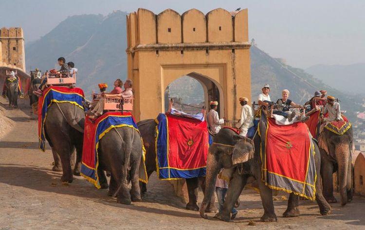 Jaipur Pink City Rajasthan. vis - alinajack | ello