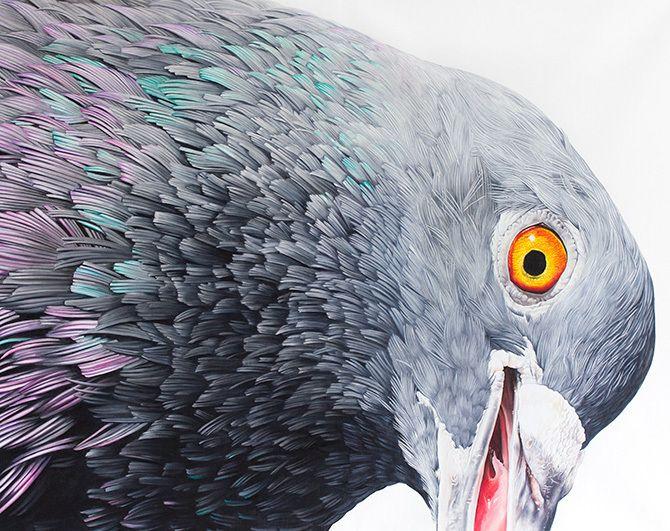 Impressive pigeon paintings mur - nettculture | ello