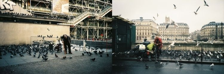 man, pigeons, paris, street, canon - jpfernandes | ello