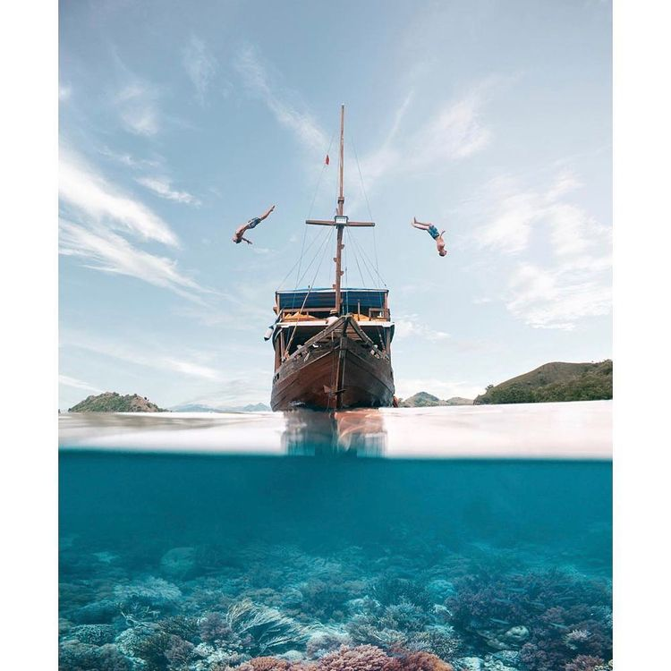 reduce Komodo Island tour price - belvaadeline   ello