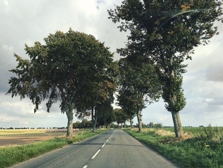 east - road, france, view - izavibes | ello