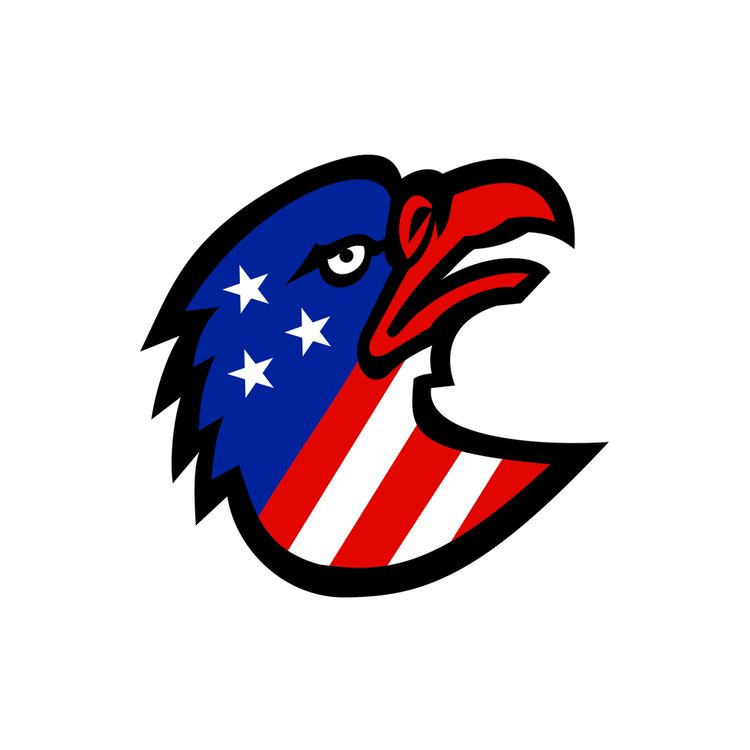 American Flag Eagle Mascot - patrimonio - patrimonio | ello
