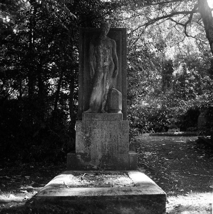 Westfriedhof 09/2018 XIV Camera - walter_ac | ello