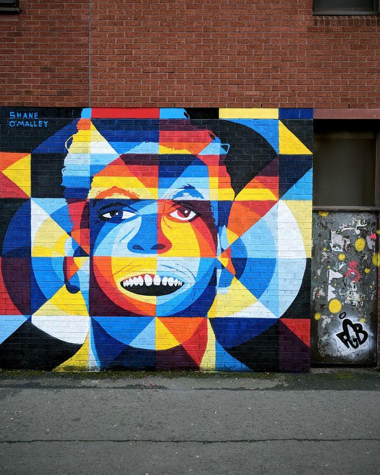 Mural painted Belfast, Northern - shaneomalleyart | ello