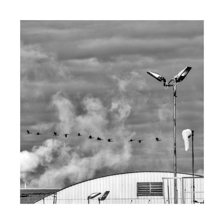 Formations - ellomonochrome, elloblackandwhitephotography - jeff_day | ello