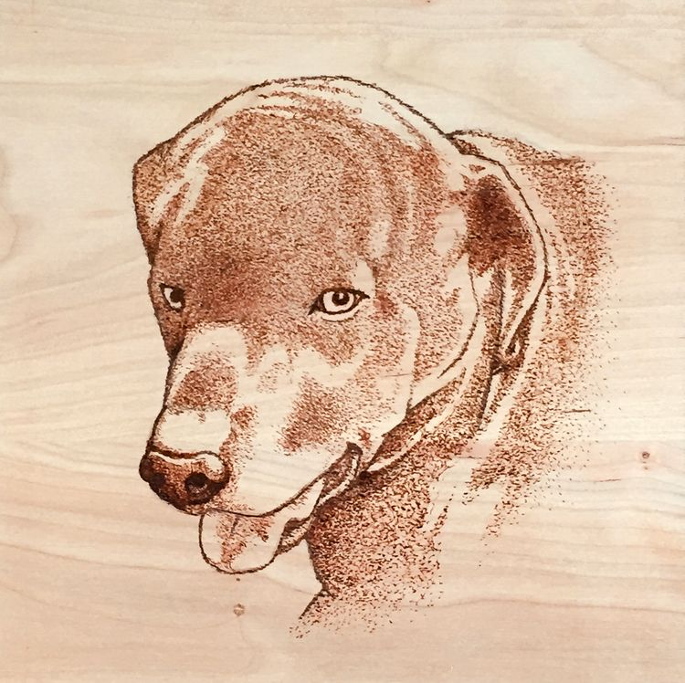 Black Lab Portrait, woodburning - jaytref | ello
