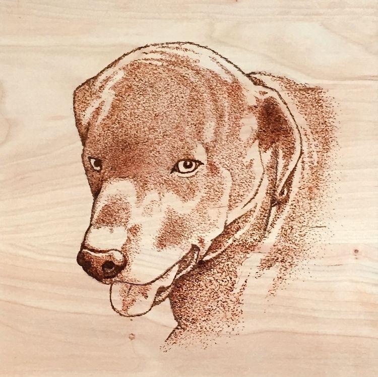 Black Lab Portrait, woodburning - jaytref | ello