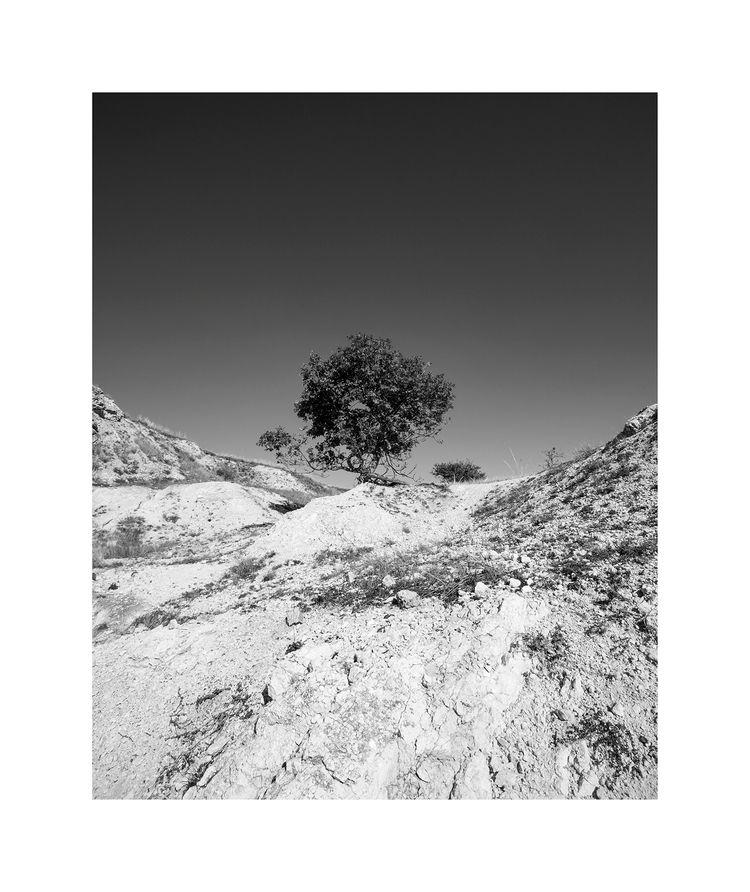 photography, contemporaryphotography - zsolophoto | ello