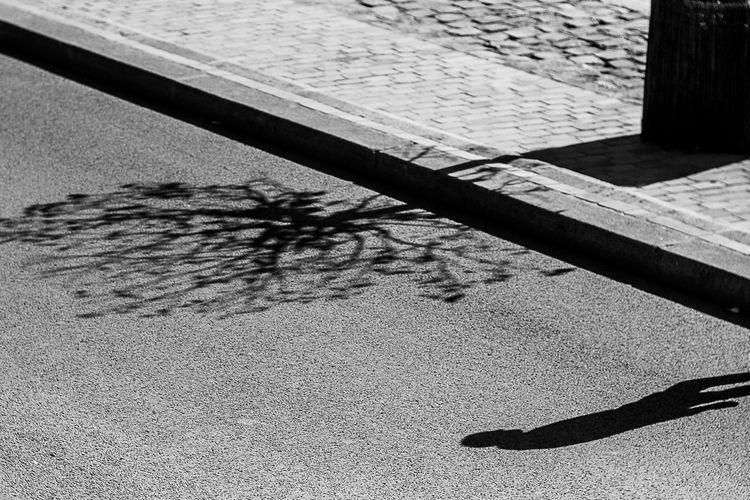 Light shadow quayside - bnw, paris - flommeunier | ello