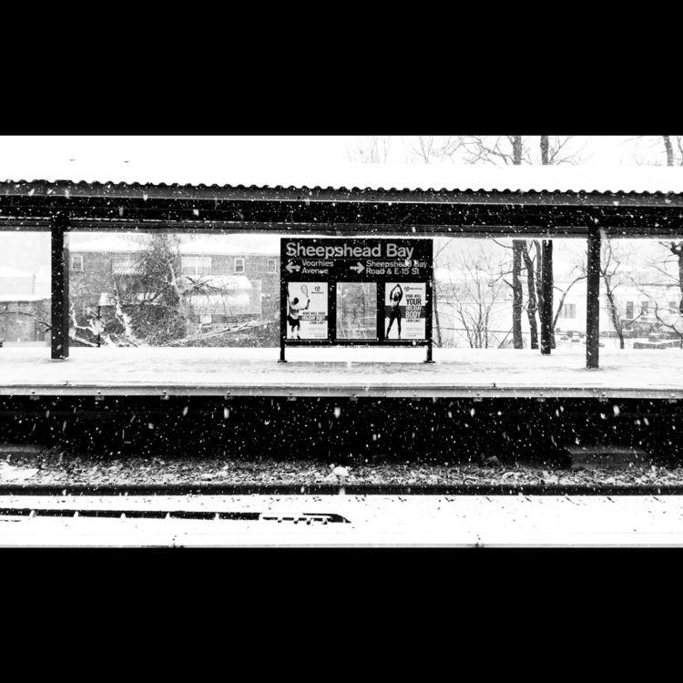 brooklyn, winter, snow - robotswan | ello