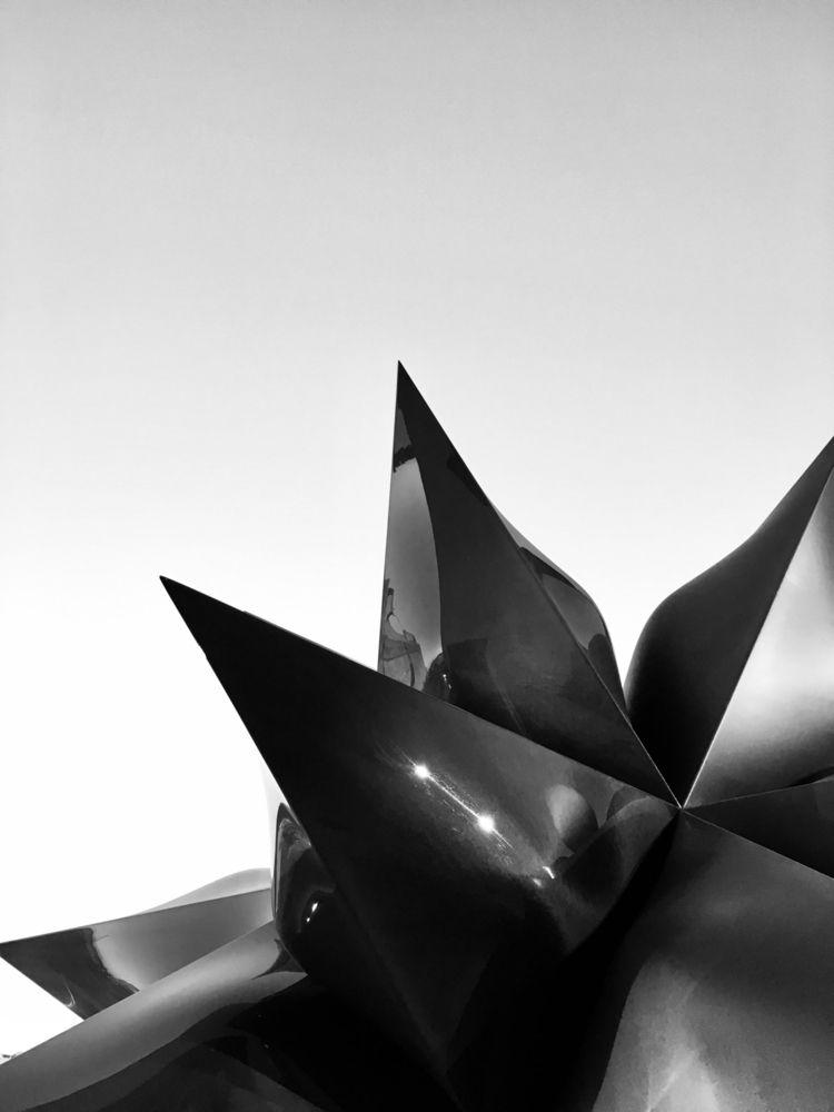 whitney, museum, photography - robotswan | ello