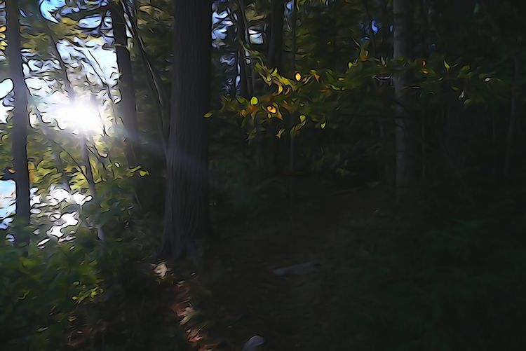 Saranac Lake - sony, sonycamera - coochdawg | ello