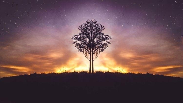 Tree Magic - landscape, ellolandscape - felipehelfstein | ello