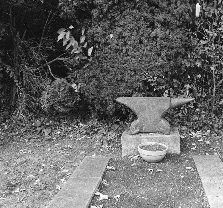 Westfriedhof II 09/2018 XVII Ca - walter_ac | ello