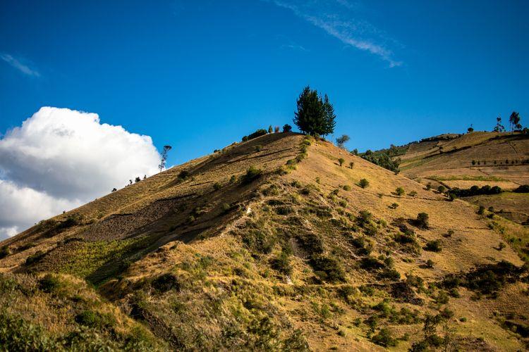 art, mountain, andes, landscape - davidpinto | ello