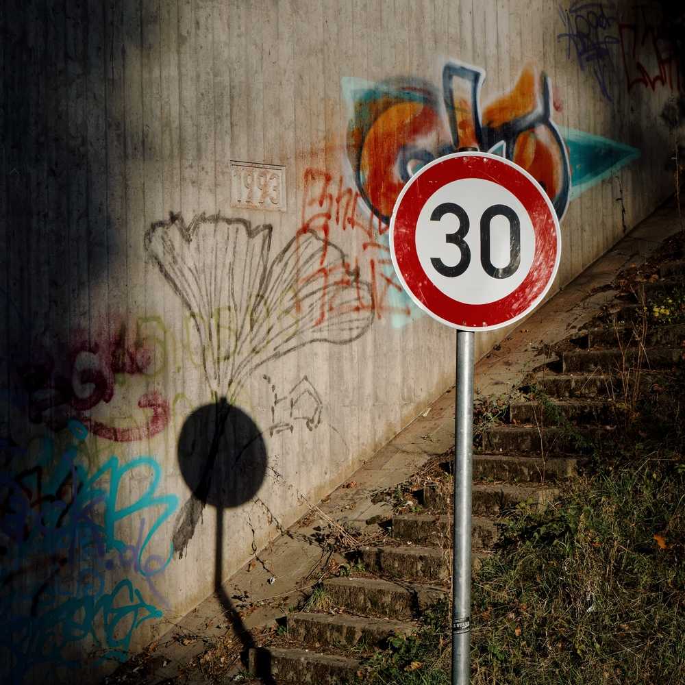 Ginkgo - photography, street, almostart - marcushammerschmitt | ello
