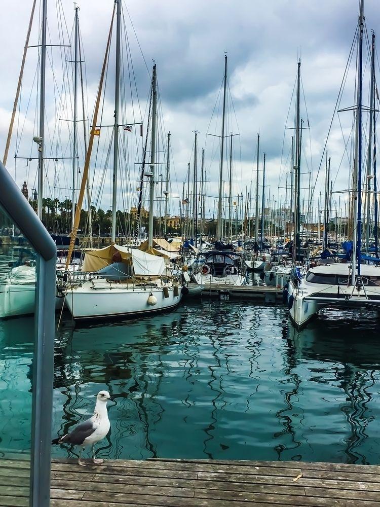 Barcelona. Sail sail - sailing, sailingship - aesthetictraveller   ello