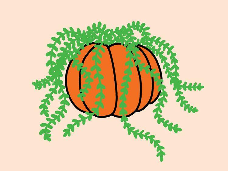 Inktober day 15. pumpkins plant - ashleighgreen   ello