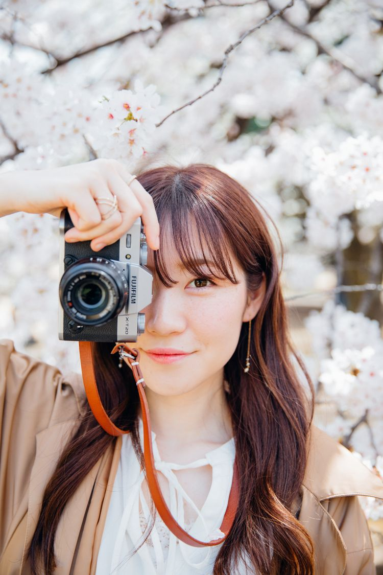 Japan photography plan - sakura - terence223 | ello