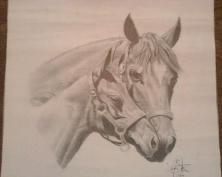Mare pony - islangink | ello