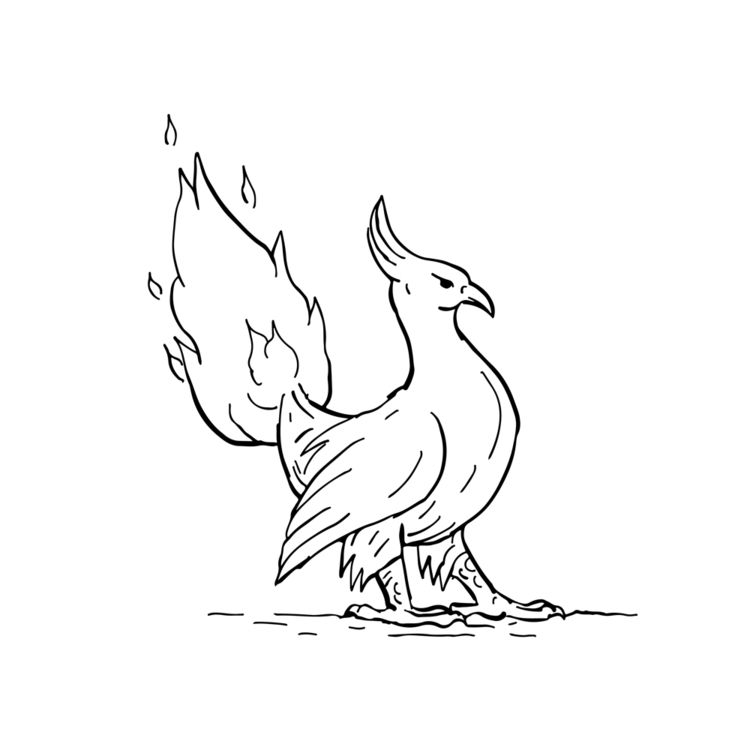 Phoenix Burning Tail Drawing - illustration - patrimonio | ello