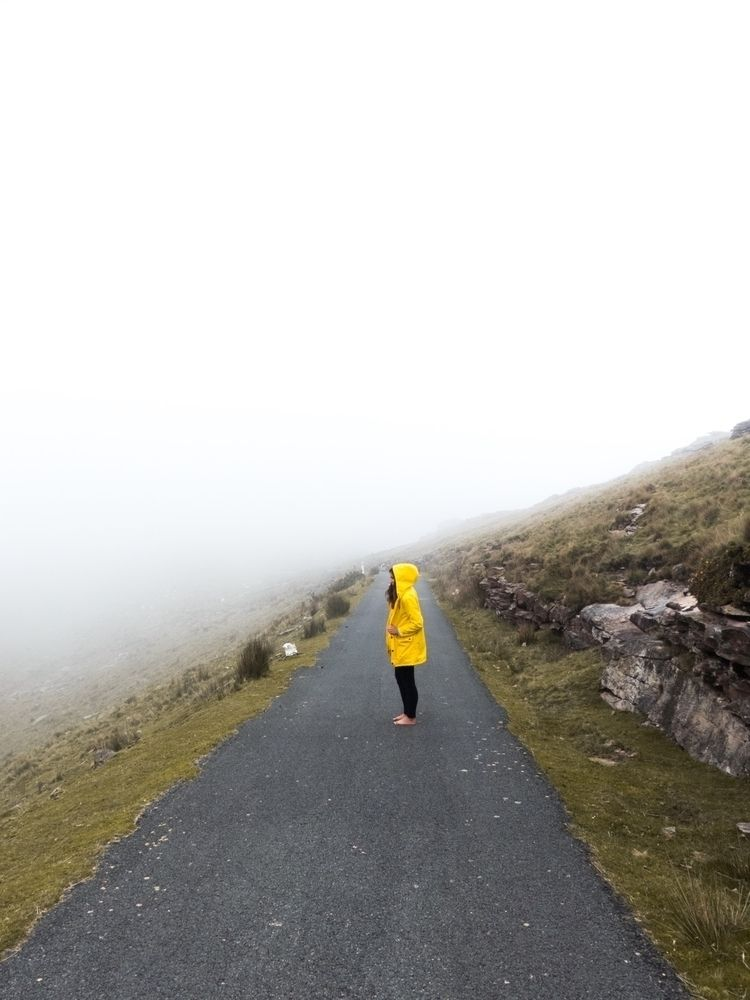 mountain#fog#yellow#mood#vibe#explore - olivloliv   ello