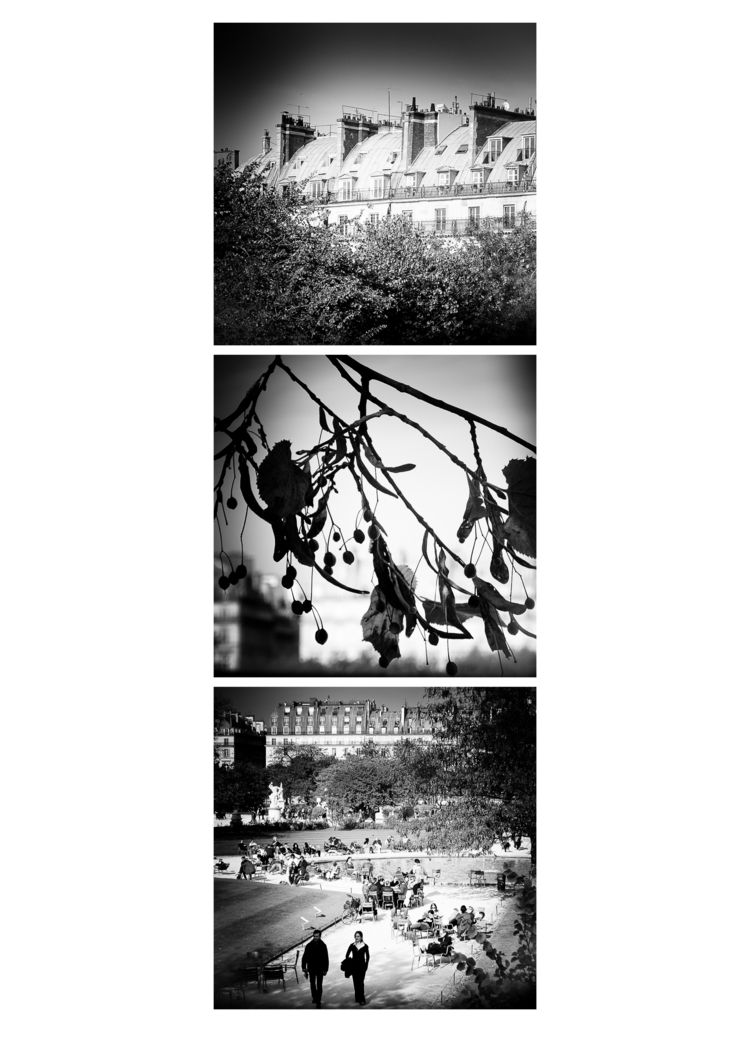 Triptych Jardin des Tuileries,  - flommeunier | ello