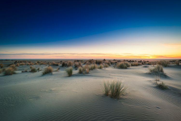Sunset Espiguette beach, Camarg - david_parenteau | ello