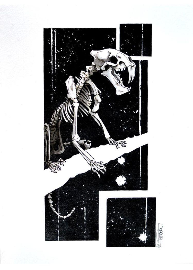 Saber-toothed tiger skeleton, S - skeenee | ello