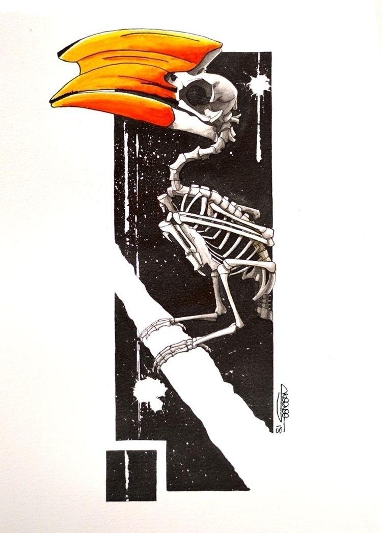 Hornbill skeleton, Skeenee, Fou - skeenee | ello