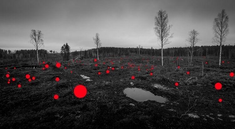 series: 100 Mistakes Jaakko Kah - camerawork | ello