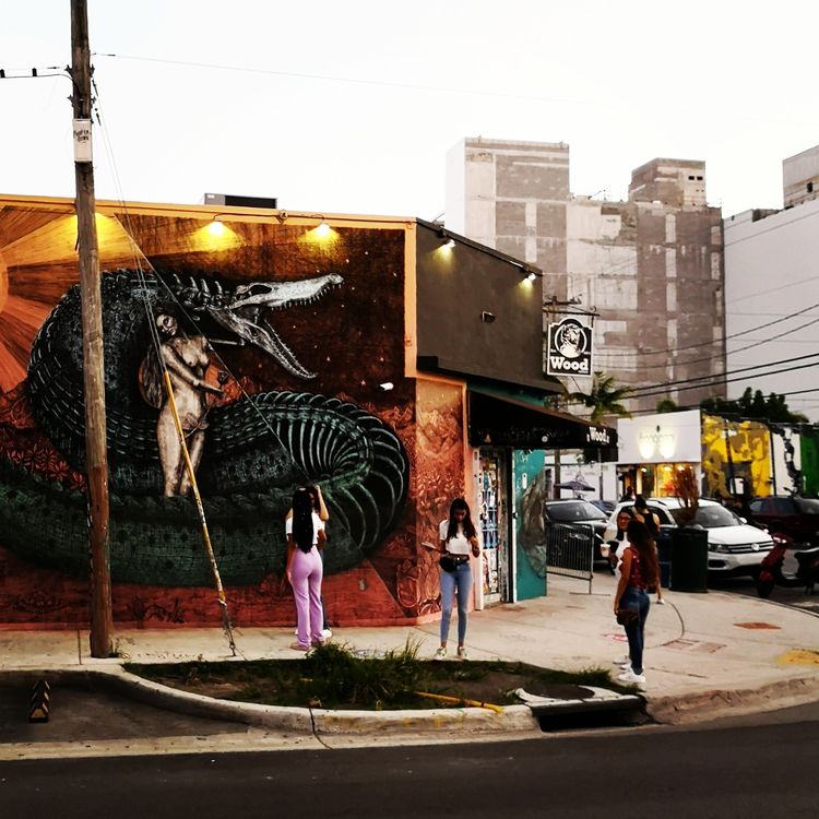 Streetart Wynwood Miami - wynwood - stigergutt | ello