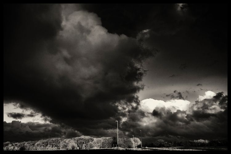 Fall Sky - bnw, bw, blackandwhitephotography - sselvejer   ello