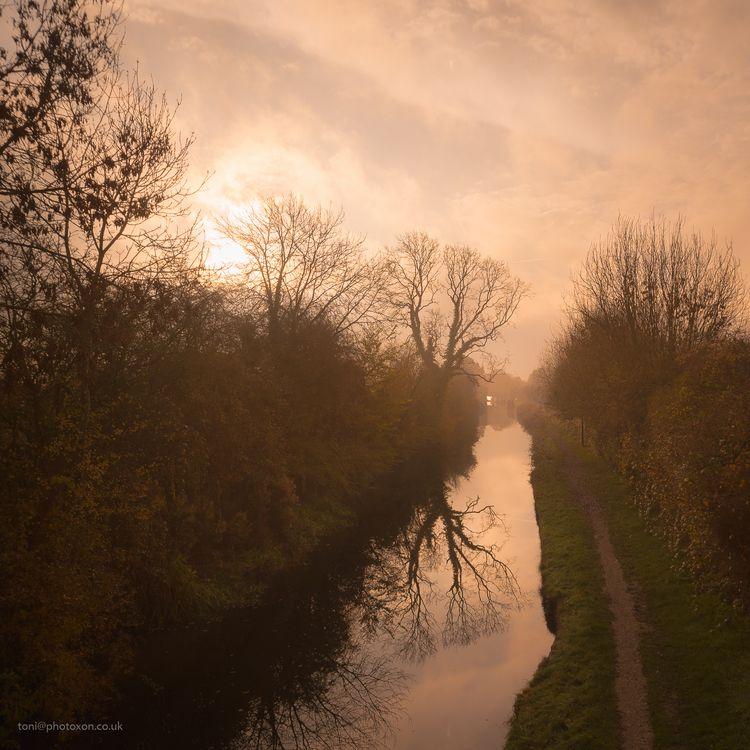 Misty morning, Thrupp. Oxford,  - toni_ertl | ello