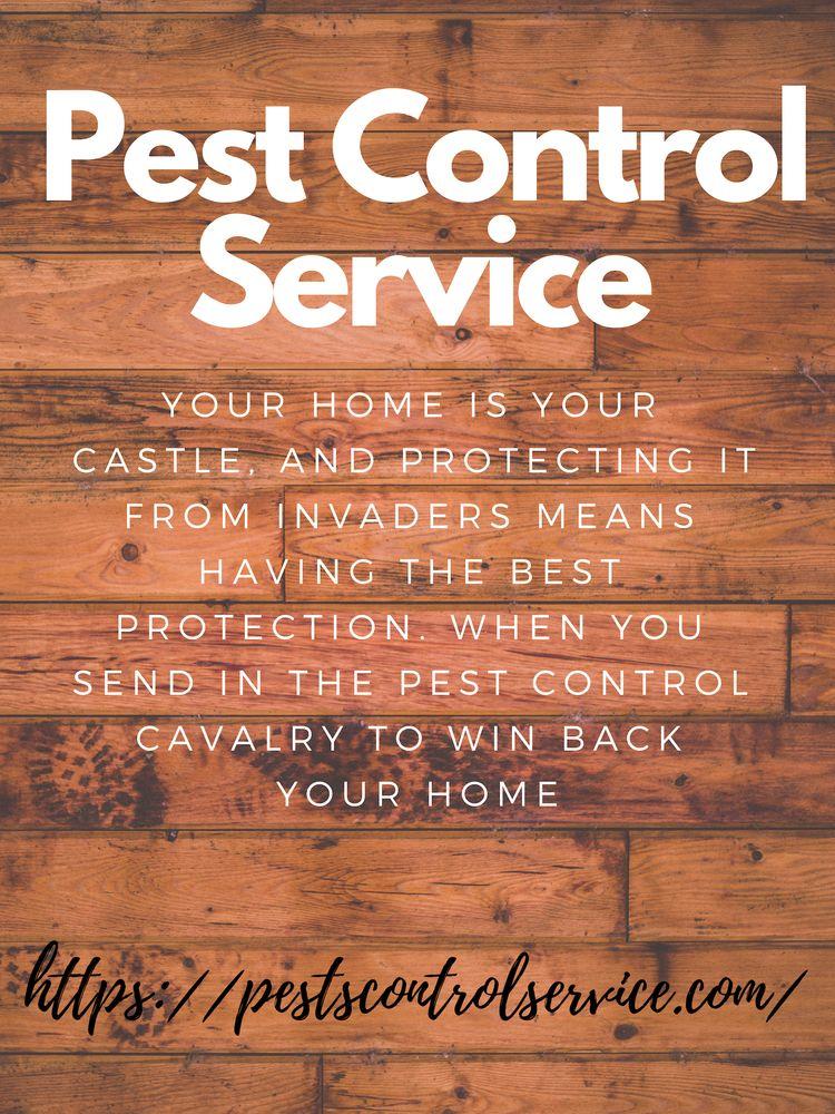 Pest Control Service home castl - alexander451245 | ello