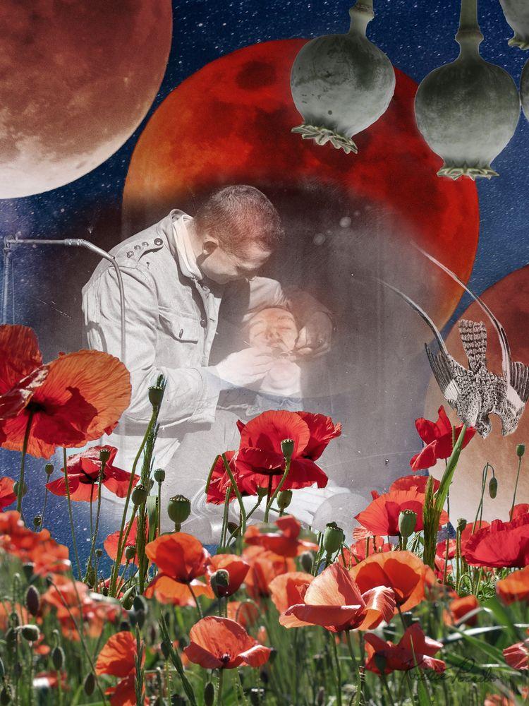 Pain Poppies. Digital Collage.  - yellowcatt | ello