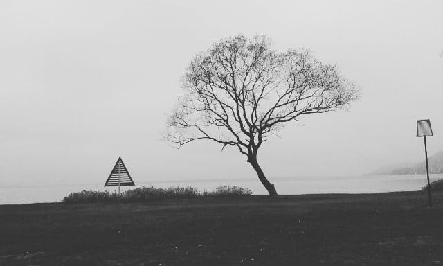 November Mist 1 South Wättern.s - mellyrn | ello