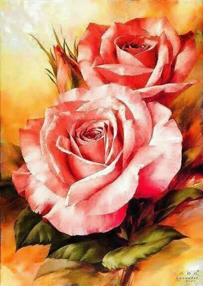rose. beautiful art work - suntinee | ello