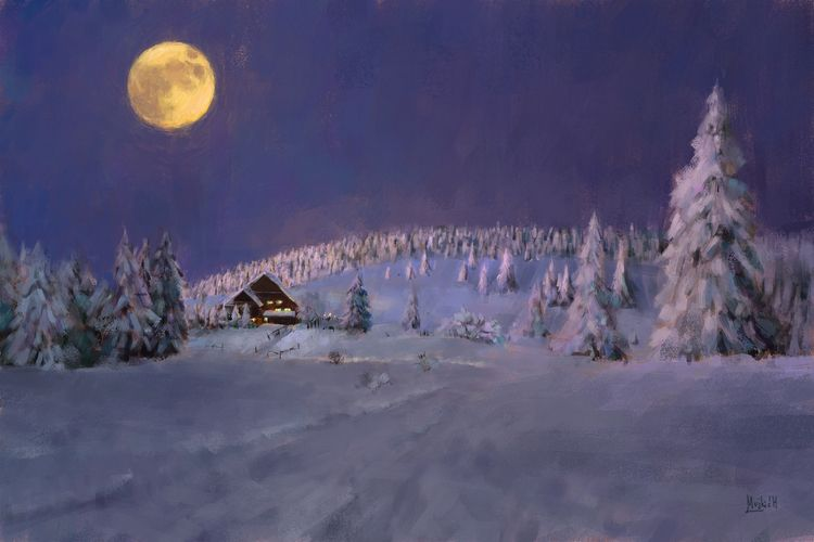 Winter moonlight Photo study - mujkicharis | ello