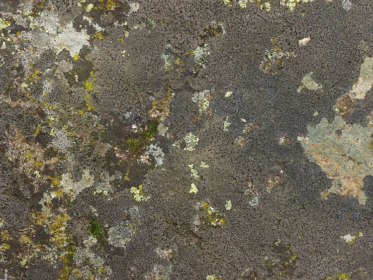 Bolos | rocks, soil organics - boulder - paulzoller | ello