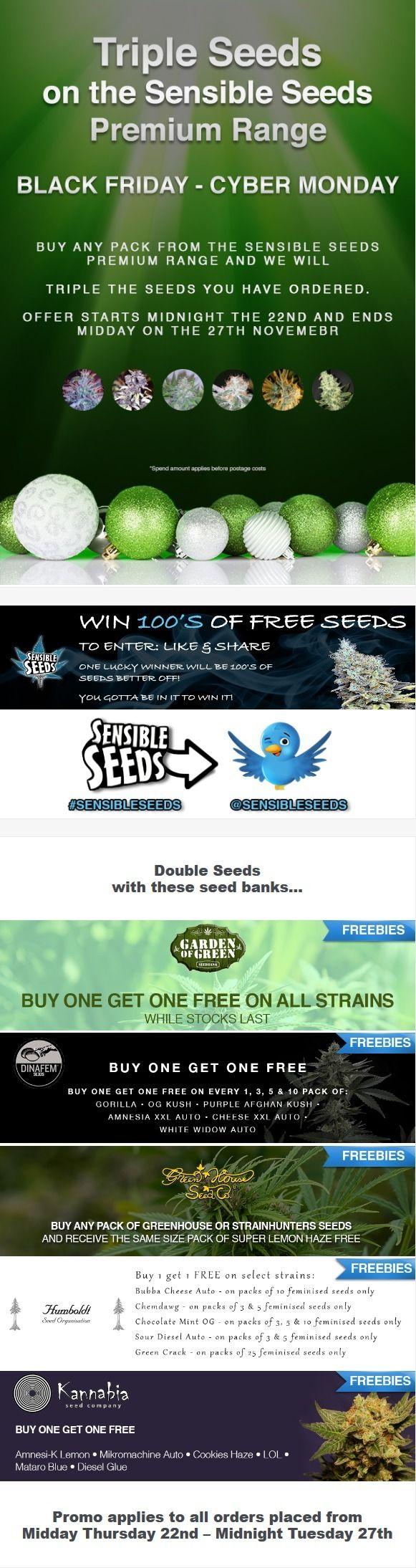 Black Friday Promo Seeds offeri - sensibleseeds   ello
