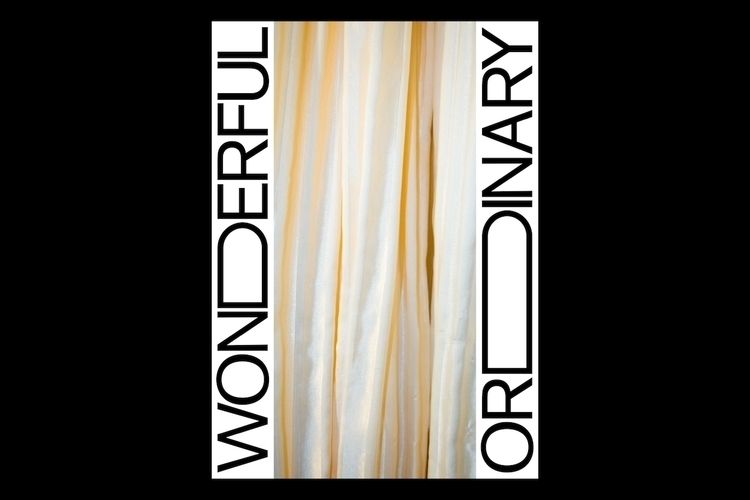 Wonderful Ordinary 2017 Graphic - studioreko | ello