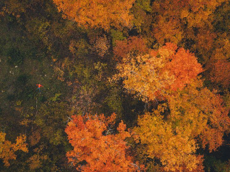 shot sky. Goodbye autumn. good  - jonathonreed | ello