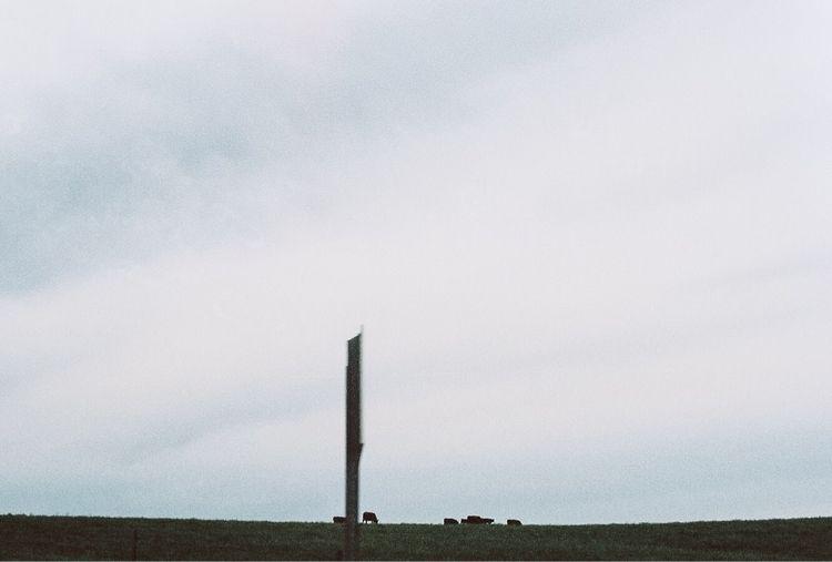 big | - 35mm, kodak, film, filmphotography - willmstevenson | ello