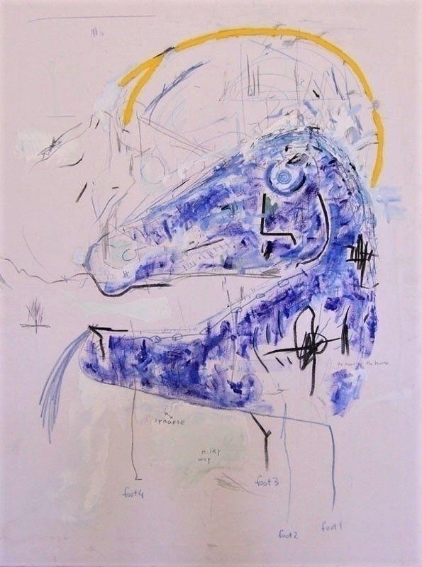 COSMIC HORSE - 80 60cm Acrylic  - samuelsultana | ello