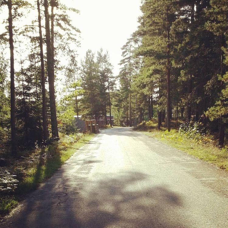 Begravningsplats ~ Svenska - Hovshaga - skogskyrkogardar | ello