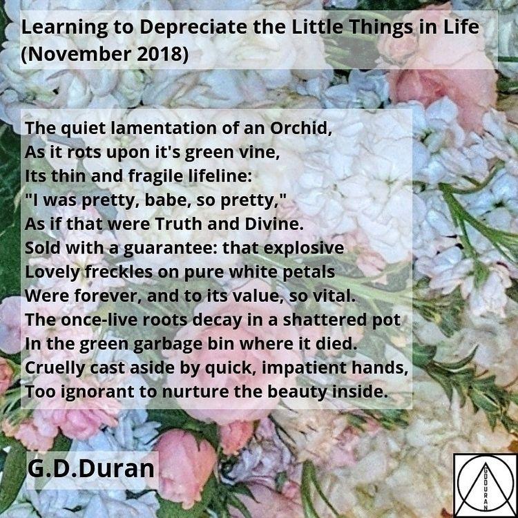 Learning Depreciate Life (Novem - gdduran | ello